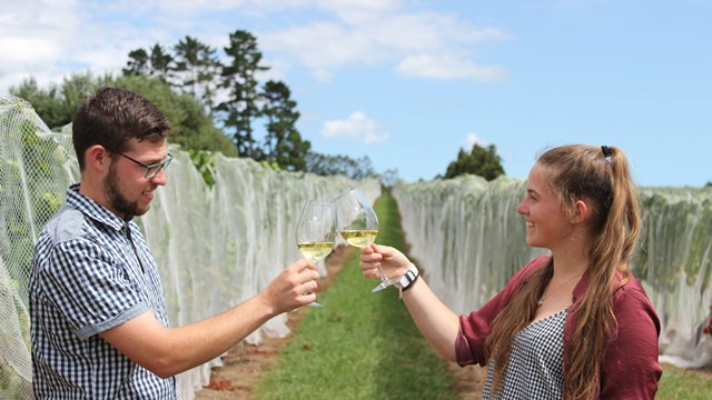 Tyler and Amber Soljian toasting glasses of white wine