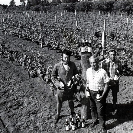 Tony, Rex and Frank Soljian in front of the Soljans vineyard