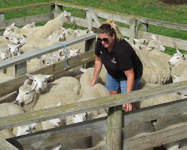 Kirsty Harkness in a sheep pen