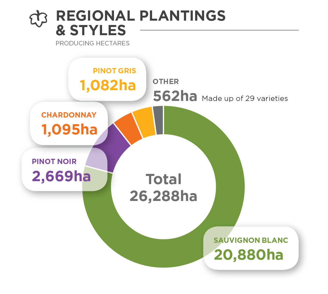 Donut chart showing the hectares of different varieties planted in Marlborough