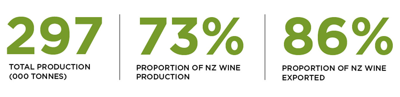 Statistics for production and exports of sauvignon blanc