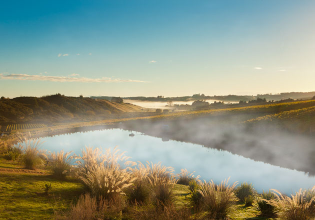 River at Aronui Wines