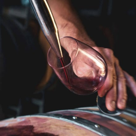 Pinot Noir being poured into a glass.