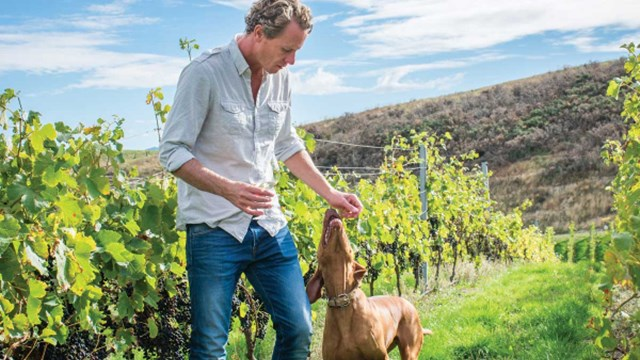 Dave Clouston in vineyard with dog