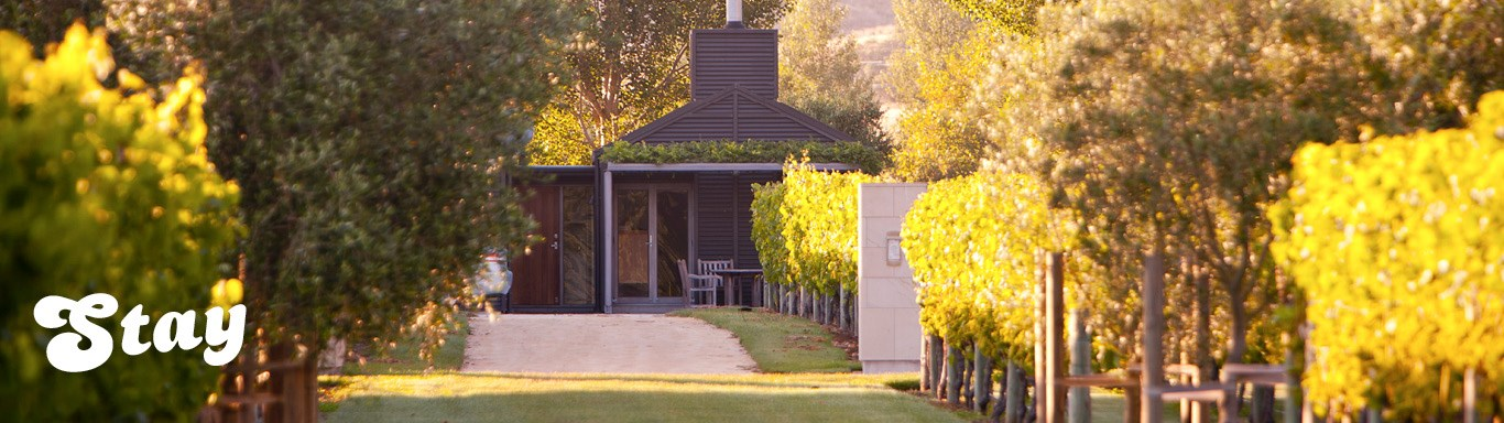 Vineyard accommodation